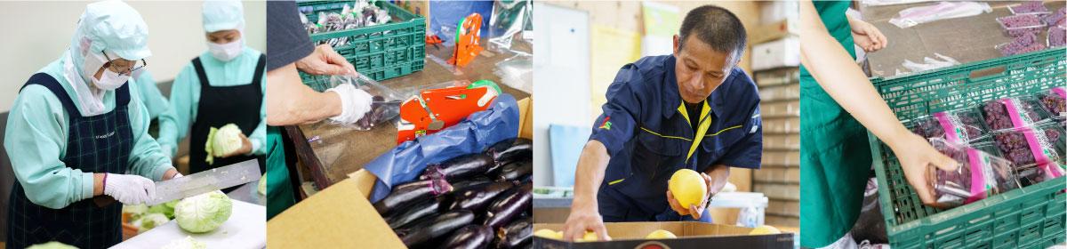 野菜のカット・箱詰め作業など、働く社員の写真